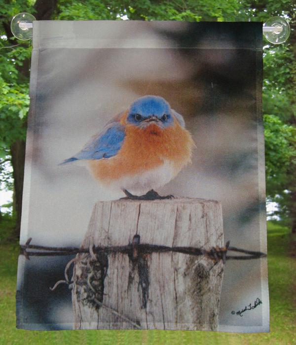Songbird Essentials Flag Garden, Mad Bluebird