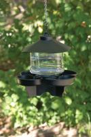 First Nature Clear Lantern Bird Bath Waterer