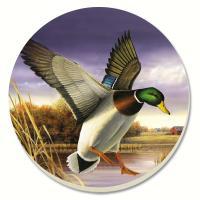 Counter Art Water Birds Mallard Coasters Set of 4