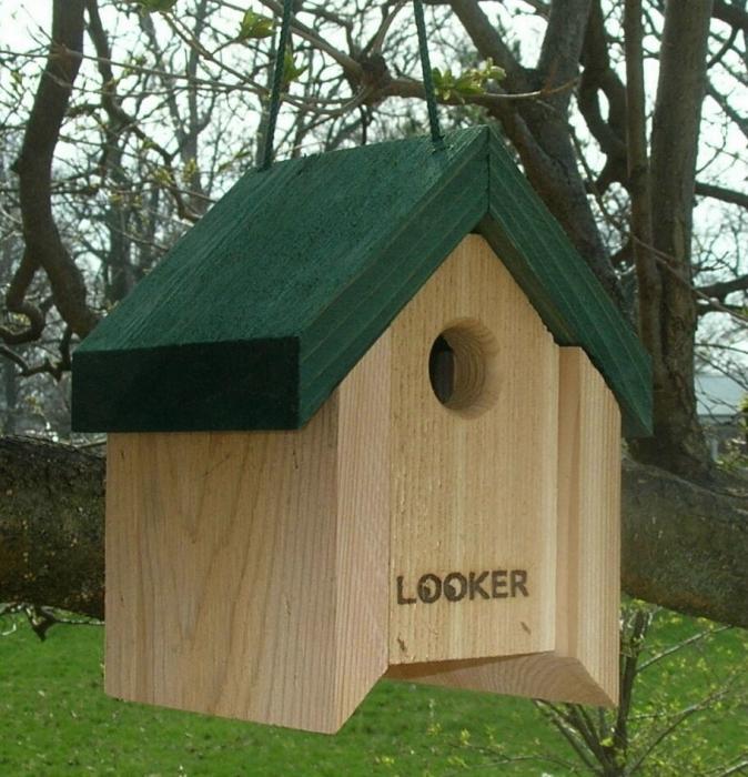 Songbird Essentials Lifting Roof Wren House