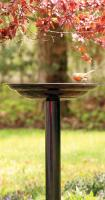 Pinebush Birdbath Dark Copper