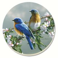 Counter Art Beautiful Songbirds Bluebirds Coasters Set of 4