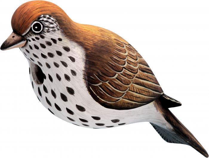 Songbird Essentials Hermit Thrush Birdhouse