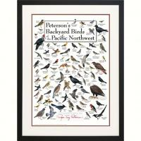 Steven M. Lewers & Associates Peterson's Backyard Birds of Pacific NW Poster