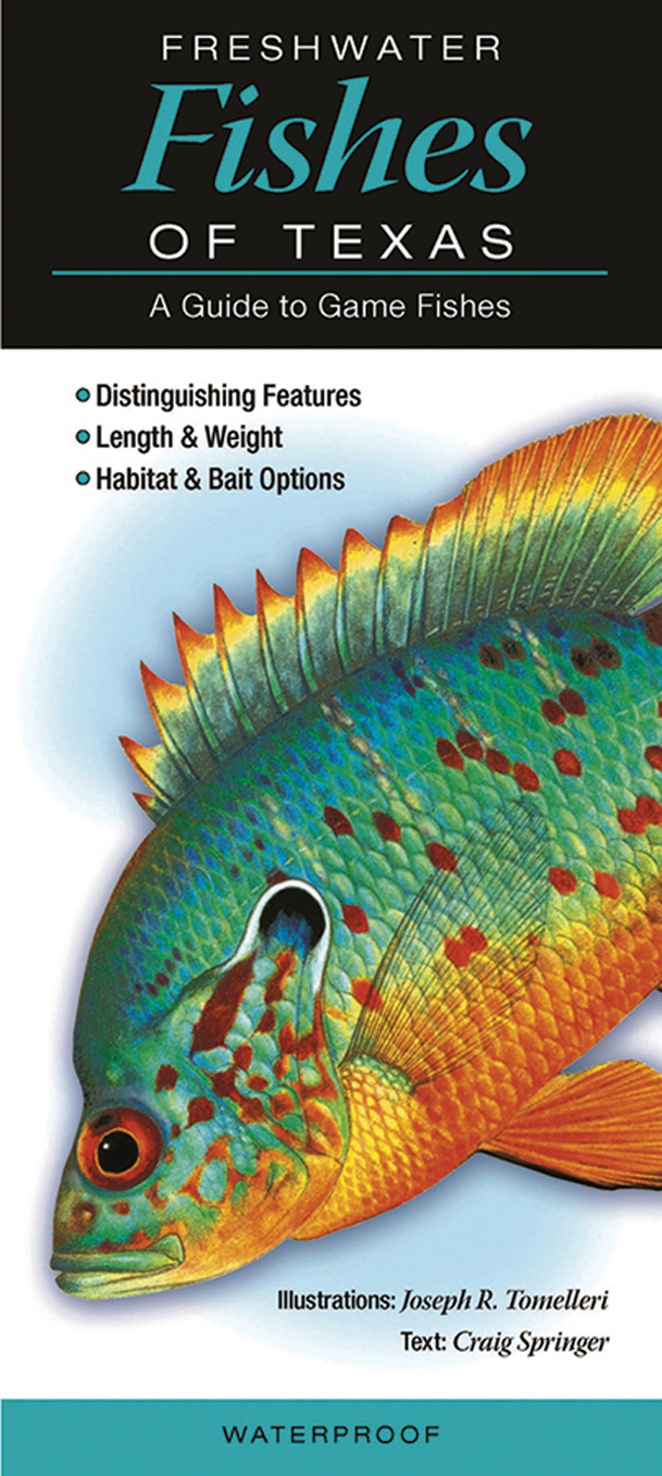 Quick reference publishing freshwater fish of texas for Texas freshwater fish