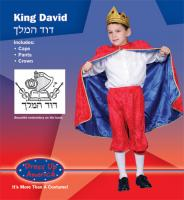 Dress Up America Deluxe King David - Toddler T4