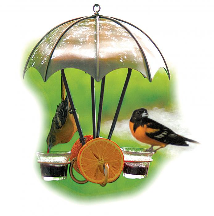 Woodlink Brushed Copper Oriole Bird Feeder