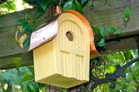 Heartwood Twitter Junction Bird House, Yellow
