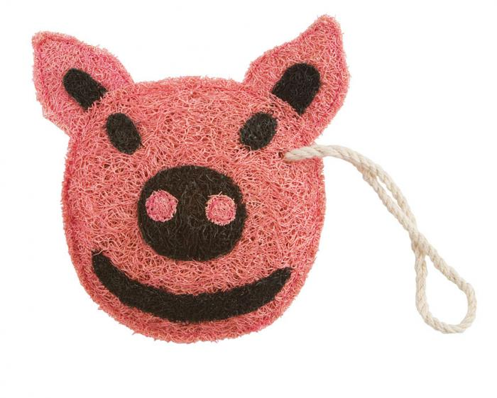 Loofah Art Piggy