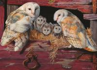 Outset Media Games Barn Owls Puzzle 1000 pcs