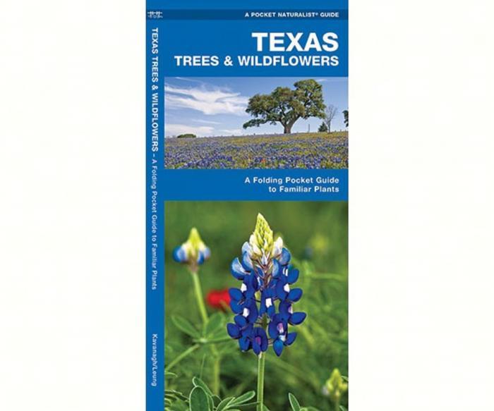 Waterford Texas Trees & Wildflowers