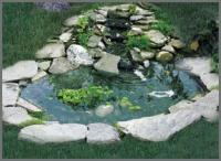 Winged Aquatics Bird Pond with 3 Tier Cascade