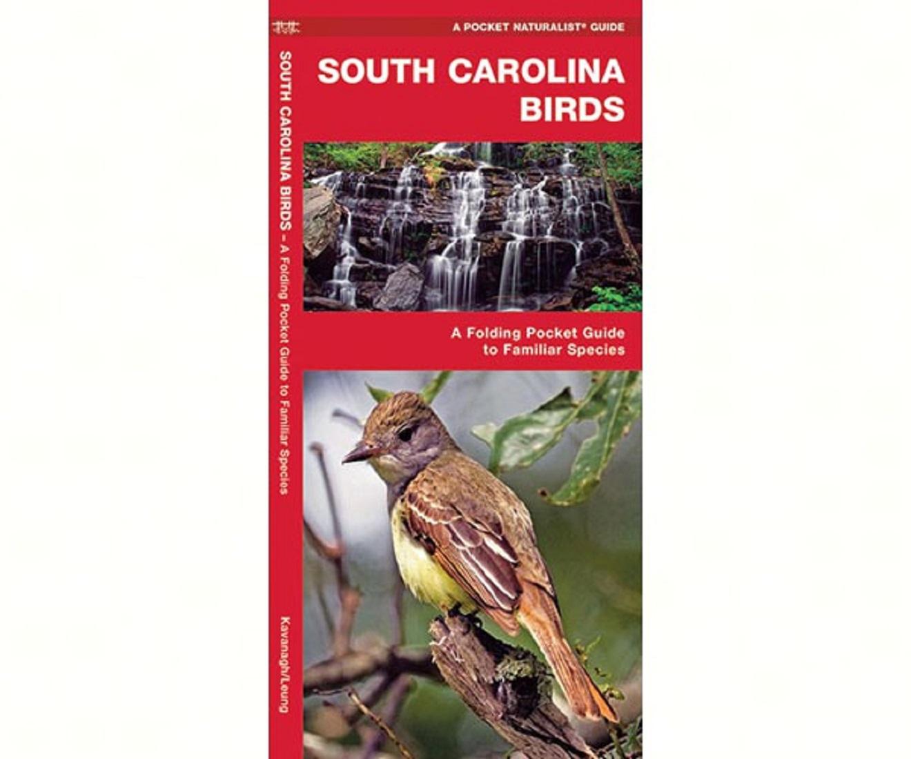 south carolina birds