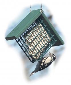 Suet Feeders by Woodlink Audubon Series