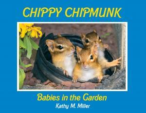 Children's Books by Celtic Sunrise