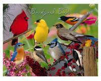 Impact Photographics Cleaning Cloth Backyard Birds