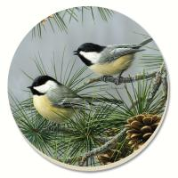 Counter Art Beautiful Songbirds Chickadees Coasters Set of 4