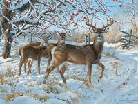 Outset Media Games Winter Deer 500 pcs