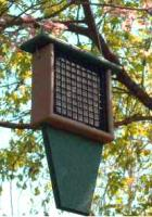 Rubicon Suet Feeder with Tail Prop Bird Feeder - Hunter Green
