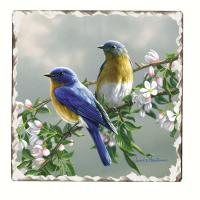 Counter Art Bluebird Number 1 Single Tumbled Tile Coaster