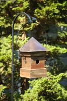 Heartwood Lantern Loft Birdhouse, Mahogany