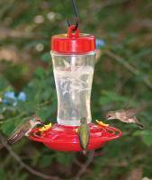 Homestead Etched Glass Hummingbird Feeder 12 oz