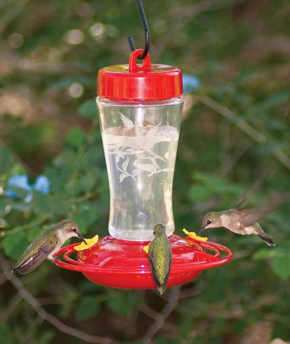 Homestead Etched Glass Hummingbird Feeder 12 oz