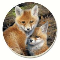 Counter Art Fox Brothers Coasters Set of 4