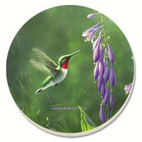 Counter Art Hummingbird Hosta Coasters Set of 4