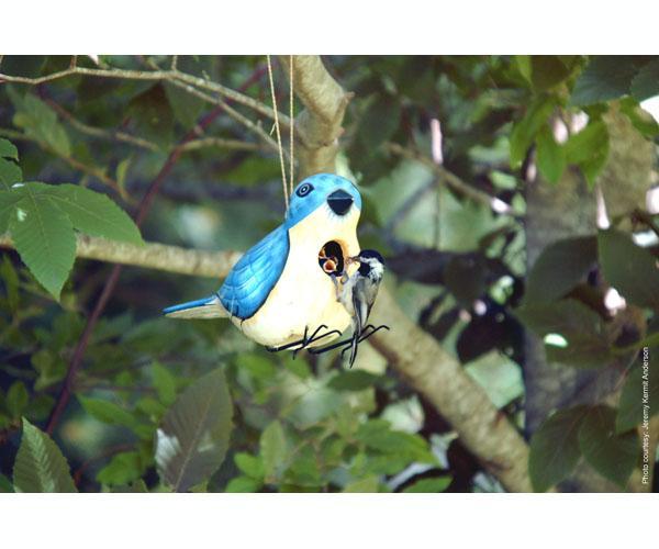 Bobbo Eastern Bluebird Birdhouse