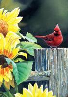 Tree Free Greetings Cardinal & Sunflowers Blank