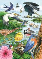 Outset Media Games North American Birds 35 Piece Framed Puzzle