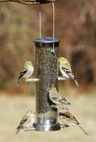 Aspects Small Brushed Nickel Quick Clean Base Thistle Tube Bird Feeder
