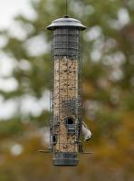 Woodlink Audubon Series Dragonfly Squirrel Proof Feeder