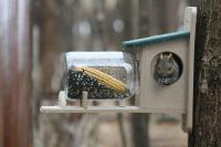 Birds Choice Recycled Squirrel Jar Feeder