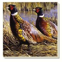 Counter Art Game Birds Pheasants Coasters Set of 4