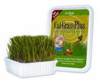Cat Grass Plus Tub