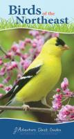 Adventure Publications Birds of the Northeast Quick Guide