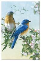 Tree Free Greetings Bluebird Branch Thank You Notes