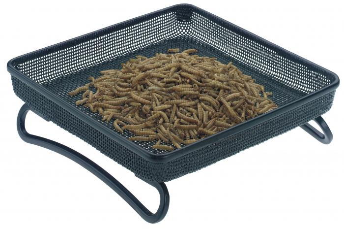 Rainbow-Gardman Compact Tray Bird Feeder