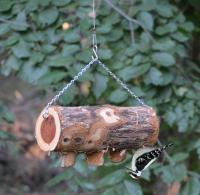 Songbird Essentials 3 Plug Upside Down Log Suet Feeder