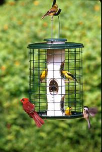 Tube / Finch Feeders by Vari-Crafts