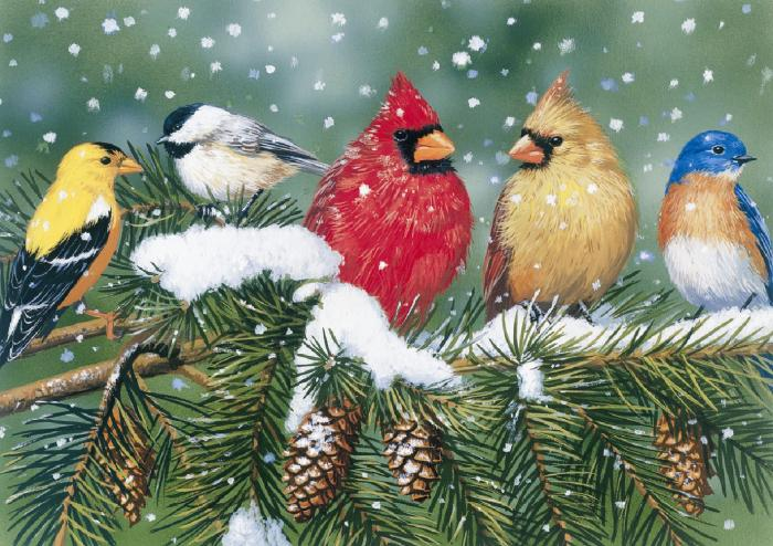 White Mountain Cardinals and Friends Puzzle