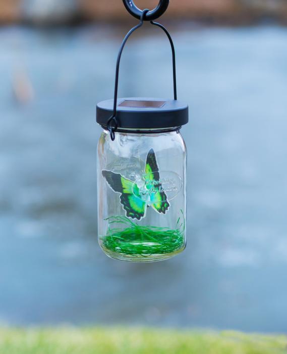 Echo Valley Butterfly Solar Lantern