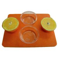 Bird's Choice Jelly Tray Oriole Bird Feeder