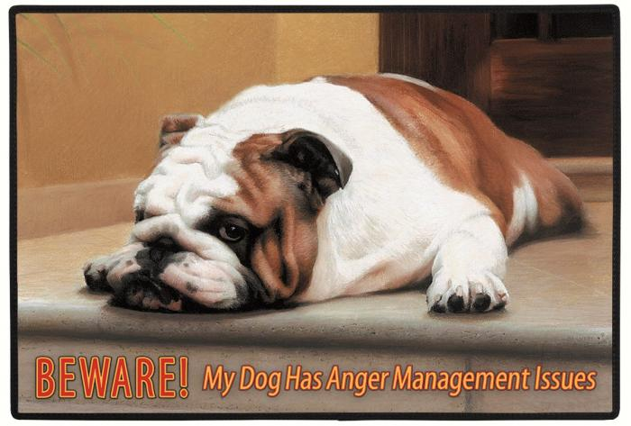 Fiddler's Elbow Beware! Anger Management Dog Doormat