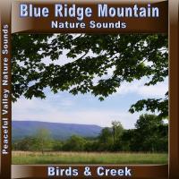 Peaceful Valley Productions Blue Ridge Mountain Birds & Creek CD