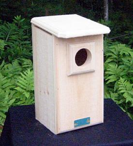 Saw-Whet/Screech Owl House