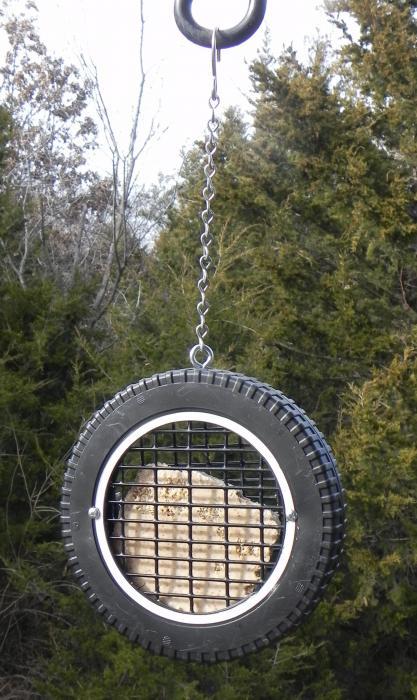 Songbird Essentials Wilbur's Woodpecker Wheel