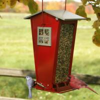 Woodlink Audubon Series Snack Shop Bird Feeder